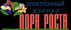 """Электронный журнал """"Пора роста"""""""